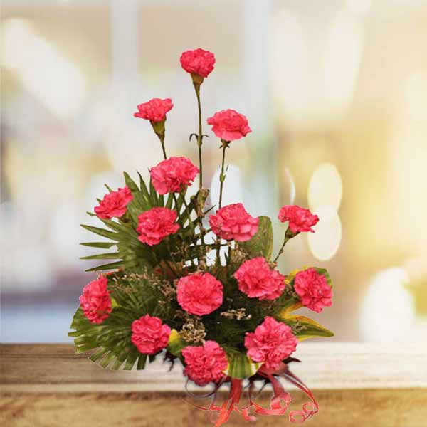 send pink carnations online