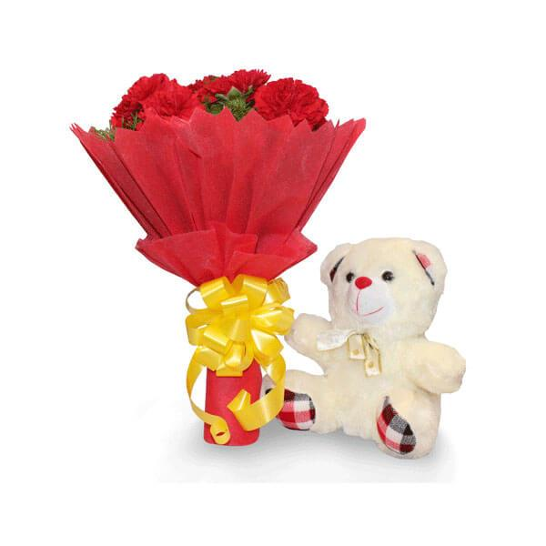 send carnations and teddy online