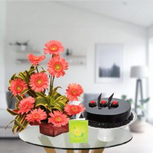 pink gerbera bouquet and chocolate cake